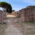 Ostia antica: un breve tour lungo il decumano con la mia ArcheoDogInfluencer