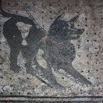 """""""Gli animali in archeologia: l'importanza degli animali dall'età preistorica a quella romana"""", di Carmen Cannizzaro"""